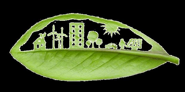 Licenciamento ambiental - o que é, quais os tipos e quem precisa 1