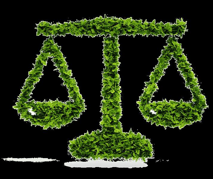 Licenciamento ambiental - o que é, quais os tipos e quem precisa 4