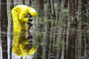 A crescente demanda das perícias ambientais e suas razões