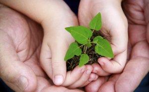 A transição da sociedade para a sustentabilidade